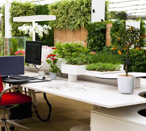 Chiêm ngưỡng kiểu thiết kế văn phòng phù hợp trong tương lai